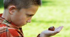 Boy holding a conker