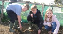 Children at the allotment in Gillingham