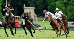 eCirencester Park Polo Club Horses