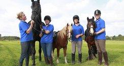 Amersham Horses