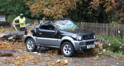 Car Destroyed By Falling Tree