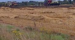 Eltisley Field Fire