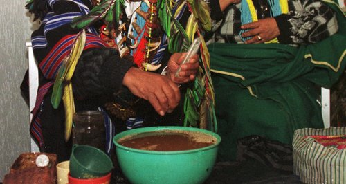 A colombian shaman prepares a batch of Yage. (PA)