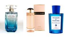 Perfumes Canvas MEGAPOD