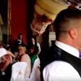 Storyful: Wedding cake disaster