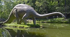 A model of a Diplodocus