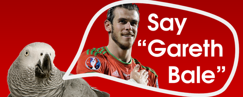 Say Gareth Bale