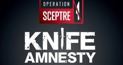 Hampshire Police knife amnesty