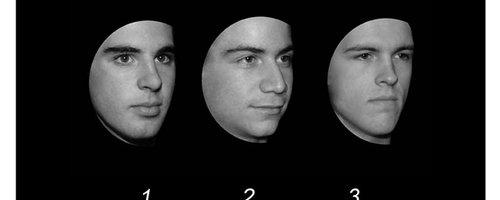 Cambridge Face Test canvas