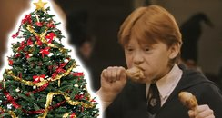 Muggles Are Invited To Eat Christmas Dinner At Hog