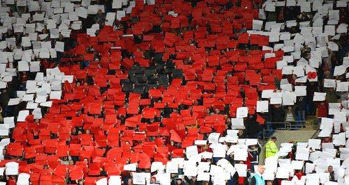 Wales v Serbia Poppy