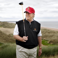 Trump Menie