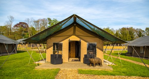 Port Lympne Reserve - Bear Lodge