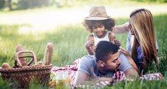 picnic, family