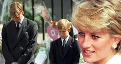 'We Owe It To Her': Prince William And Harry Make
