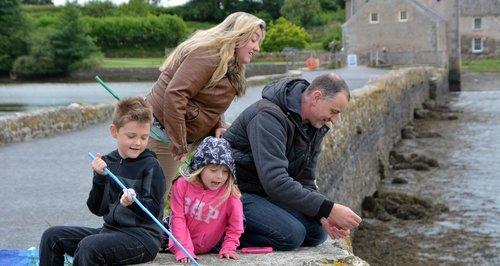 Pembrokeshire fish festival